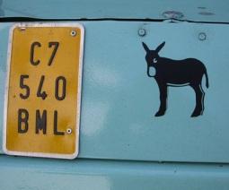 burro1.jpg